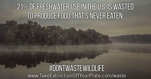 lake-waste
